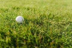 белизна зеленого цвета травы гольфа шарика Стоковые Фотографии RF