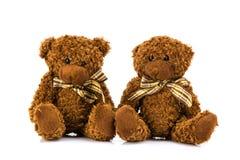 белизна игрушечного медведя предпосылки Стоковое Изображение