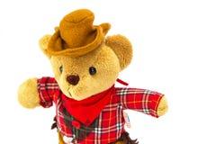 белизна игрушечного медведя предпосылки Стоковое Фото