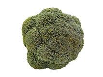 белизна изолированная брокколи Стоковые Фото