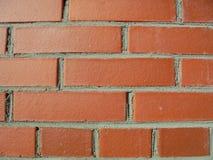 белизна изолированная кирпичом красная Стоковое Изображение RF