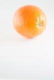 белизна изолированная предпосылкой померанцовая Стоковая Фотография