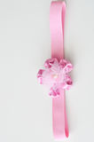 белизна изолированная смычком розовая Стоковые Изображения