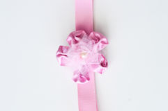 белизна изолированная смычком розовая Стоковые Изображения RF