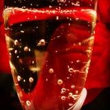 белизна изоляции шампанского стеклянная Стоковое Изображение