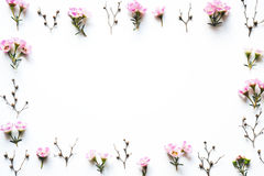 белизна 4 кадров предпосылки различная флористическая установленная стоковое изображение