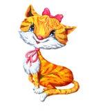 белизна кота предпосылки красная Стоковое Изображение