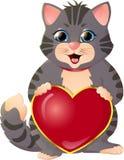 белизна котенка предпосылки серая Стоковое Изображение