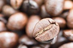 белизна кофейной чашки фасолей коричневая зажаренная в духовке Стоковые Изображения