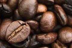 белизна кофейной чашки фасолей коричневая зажаренная в духовке Стоковые Фотографии RF