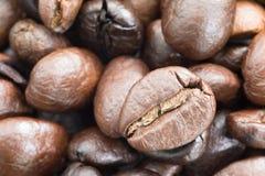 белизна кофейной чашки фасолей коричневая зажаренная в духовке Стоковая Фотография