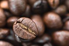 белизна кофейной чашки фасолей коричневая зажаренная в духовке Стоковое Фото
