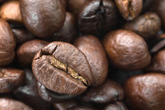 белизна кофейной чашки фасолей коричневая зажаренная в духовке Стоковые Изображения RF