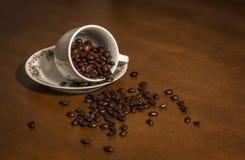 белизна кофейной чашки фасоли Стоковое Фото
