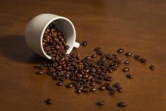 белизна кофейной чашки фасоли Стоковые Фото