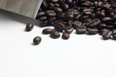 белизна кофе фасоли предпосылки скопируйте космос Стоковая Фотография RF