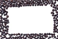 белизна кофе фасоли предпосылки Стоковое Изображение RF