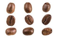 белизна кофе фасоли предпосылки Стоковое Фото