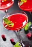 белизна клубники маргариты предпосылки спирта стоковое изображение