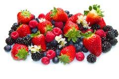 белизна клубники поленики ежевики ягод предпосылки Стоковое фото RF