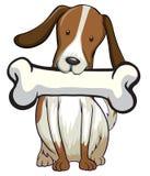 белизна обслуживания щенка собаки косточки предпосылки Стоковые Фото