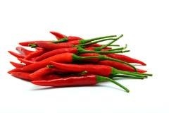 белизна перцев chili предпосылки красная Стоковые Фото