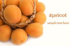белизна предпосылки абрикосов свежая Стоковое Изображение RF