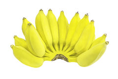 белизна предпосылки изолированная бананом Стоковая Фотография RF