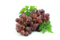 белизна предпосылки изолированная виноградиной красная Стоковые Изображения RF