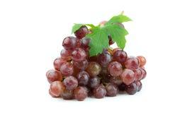 белизна предпосылки изолированная виноградиной красная Стоковые Фото
