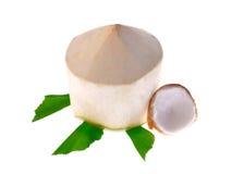 белизна предпосылки изолированная кокосом Стоковые Изображения