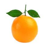 белизна предпосылки изолированная плодоовощ померанцовая Стоковые Фото