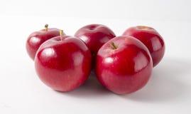 белизна предпосылки яблок красная top Стоковые Изображения