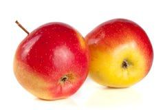 белизна предпосылки яблок свежая изолированная красная Стоковые Изображения RF