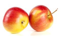 белизна предпосылки яблок свежая изолированная красная Стоковые Фото