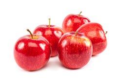 белизна предпосылки яблок свежая красная Стоковое Изображение