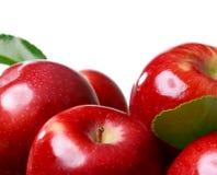 белизна предпосылки яблок свежая Стоковое Изображение RF