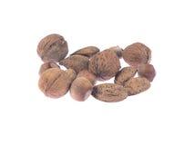 белизна предпосылки nuts Стоковое Изображение RF