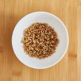 белизна пшеницы иллюстрации семенозачатка предпосылки Стоковые Фото