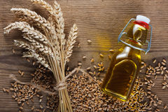 белизна пшеницы масла иллюстрации семенозачатка падения предпосылки стилизованная стоковые изображения