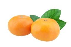 белизна плодоовощ предпосылки померанцовая Стоковые Фото