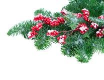 белизна рождества красная Стоковые Изображения