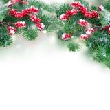 белизна рождества красная Стоковые Фотографии RF