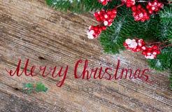 белизна рождества красная Стоковое фото RF