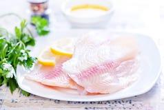 белизна серии изображения еды рыб выкружки предпосылки различная Стоковая Фотография RF