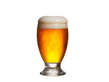 белизна стекла пива предпосылки изолированная aleppo стоковое фото rf