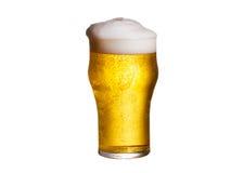 белизна стекла пива предпосылки изолированная aleppo стоковое фото