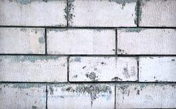 белизна стены кирпича старая Стоковая Фотография RF