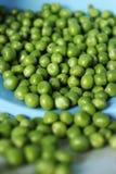 белизна стручка зеленых горохов пуль предпосылки Стоковые Изображения