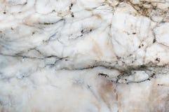 белизна текстуры res мрамора предпосылки высокая Стоковое Изображение RF